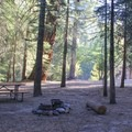 Typical campsite at Sheep Creek.- Sheep Creek Campground