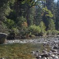 Fishing the South Fork of the Kings River next to Sheep Creek Campground.- Sheep Creek Campground