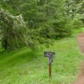 Left to Sky Campground, right to Mount Wittenberg.- Sky Trail Loop, Bear Valley to Mount Wittenberg