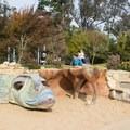 Koret Children's Playground.- Golden Gate Park
