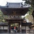 Japanese Tea Garden.- Golden Gate Park