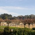 Golden Gate Park's Music Concourse lies between the de Young Museum and the California Academy of Sciences.- Golden Gate Park