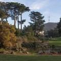 Botanical Gardens.- Golden Gate Park