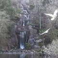 Huntington Falls at Stowe Lake. - Golden Gate Park