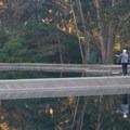 Flycasting pools at the Angler's Lodge.- Golden Gate Park