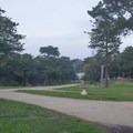 Sutro Heights Park.- Sutro Heights Park