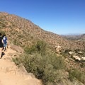 View of Paradise Valley residences.- Cholla Trail