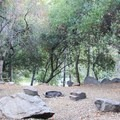 Riverside campsite, Buckeye Flat Campground.- Buckeye Flat Campground