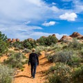 The Broken Arch Trail is wide and level. - Broken Arch Trail