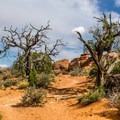 Beautiful desert scenery.- Broken Arch Trail