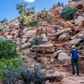 The trail starts out with a steep climb over a ridge.- Klondike Bluffs Trail + Tower Arch Hike