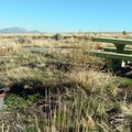 There are several campsites and picnic areas with sun and shade.- Water Canyon Recreation Area