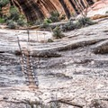 Ladder on the trail down.- Natural Bridges Loop