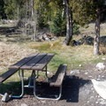Each campsite has a picnic table and fire ring.- Upper Lehman Creek Campground