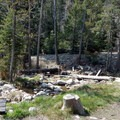There is one site with a pair of picnic tables.- Upper Lehman Creek Campground