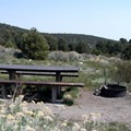 Each site has a picnic table and fire ring and is suitable for RV or tent camping.- Lower Lehman Creek Campground