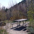 Sites are mostly sunny.- Lower Lehman Creek Campground
