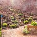 Cohab Canyon Trailhead.- Cohab Canyon