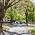 Loop C has the fewest sites but is the most spacious.- Fruita Campground