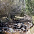 Lehman Creek runs by most of the sites in Lower Lehman Creek Campground.- Lower Lehman Creek Campground