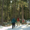 Hiking the Indigo Lake Trail in early spring.- Indigo Lake Trail