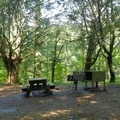 Both wooded and meadow campsites.- Sky Camp
