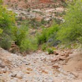 The riverbed.- Clear Creek Hike