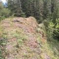 One of the knife edges that are accessible by a chimney chute off of the trail. Bear tracks were spotted nearby. - Cedar Butte