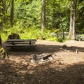 Typical campsite at Riverside Campground.- Riverside Campground