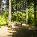 Typical campsite at Cove Creek Campground.- Detroit Lake, Cove Creek Campground
