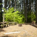 Double campsite at Cove Creek Campground.- Detroit Lake, Cove Creek Campground