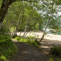 Shoreline trail at Cove Creek Campground.- Detroit Lake, Cove Creek Campground