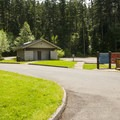 Day use area at Cove Creek Campground.- Detroit Lake, Cove Creek Campground