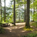 Day use picnic area at Southshore Campground.- Detroit Lake, Southshore Campground