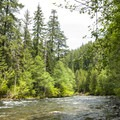 North Fork of the Santiam River at Riverside Campground.- Riverside Campground