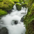 The rushing Greenwater River runs alongside the trail.- Greenwater + Echo Lakes