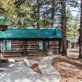 The simpler cabins are rustic and provide a sense of community.- Grand Canyon Lodge, North Rim
