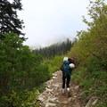 Snow Lake Trail.- Chair Peak