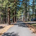 Sites are well spaced and mostly large.- North Rim Campground