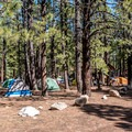 The group sites are roomy with lots of parking.- North Rim Campground