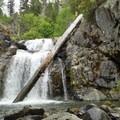 The main fall at Chambers Creek Falls. - Chambers Creek Falls