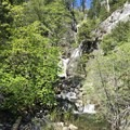 Approaching Chambers Creek Falls.- Chambers Creek Falls