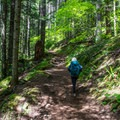 The route to Granite Mountain Lookout.- Granite Mountain Lookout