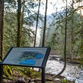 Interpretive sign along the South Fork Snoqualmie River.- Twin Falls Hike via West Trailhead