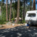 Typical site in Eightmile Campground. - Eightmile Campground
