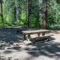 Typical site in Eightmile Campground.- Eightmile Campground