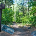 Trail to the river from a campsite.- Eightmile Campground