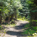 Short hiking trail entrance at the campground.- Black Pine Horse Camp + Campground
