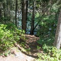A trail leading down to the water from a campsite.- Rock Island Campground