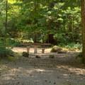 One of three sites at Indigo Springs Campground.- Indigo Springs Campground